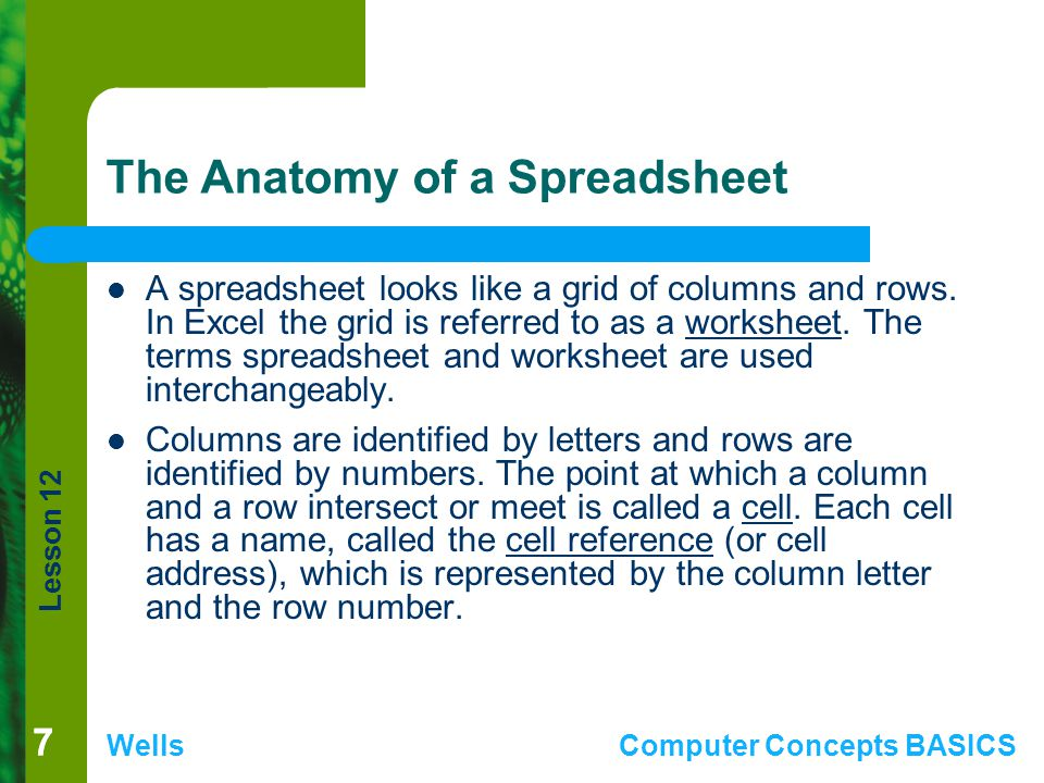 Lesson 12 WellsComputer Concepts BASICS 77 The Anatomy of a Spreadsheet A spreadsheet looks like a grid of columns and rows. In Excel the grid is refe