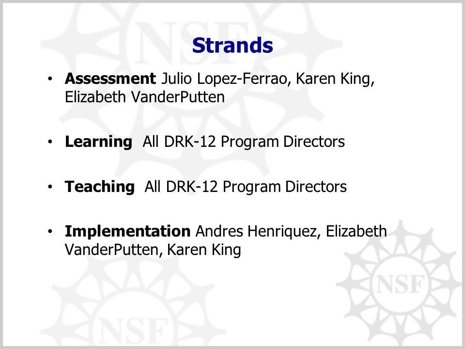 Strands Assessment Julio Lopez-Ferrao, Karen King, Elizabeth VanderPutten Learning All DRK-12 Program Directors Teaching All DRK-12 Program Directors