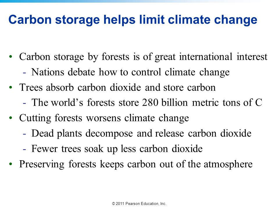 © 2011 Pearson Education, Inc. Carbon storage helps limit climate change Carbon storage by forests is of great international interest -Nations debate