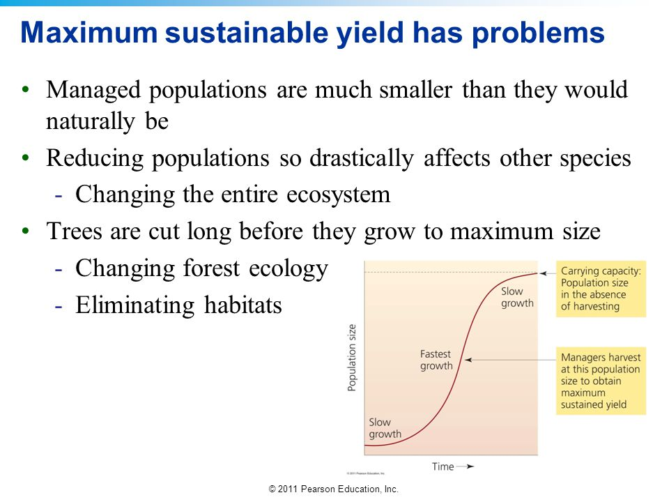 © 2011 Pearson Education, Inc. Maximum sustainable yield has problems Managed populations are much smaller than they would naturally be Reducing popul