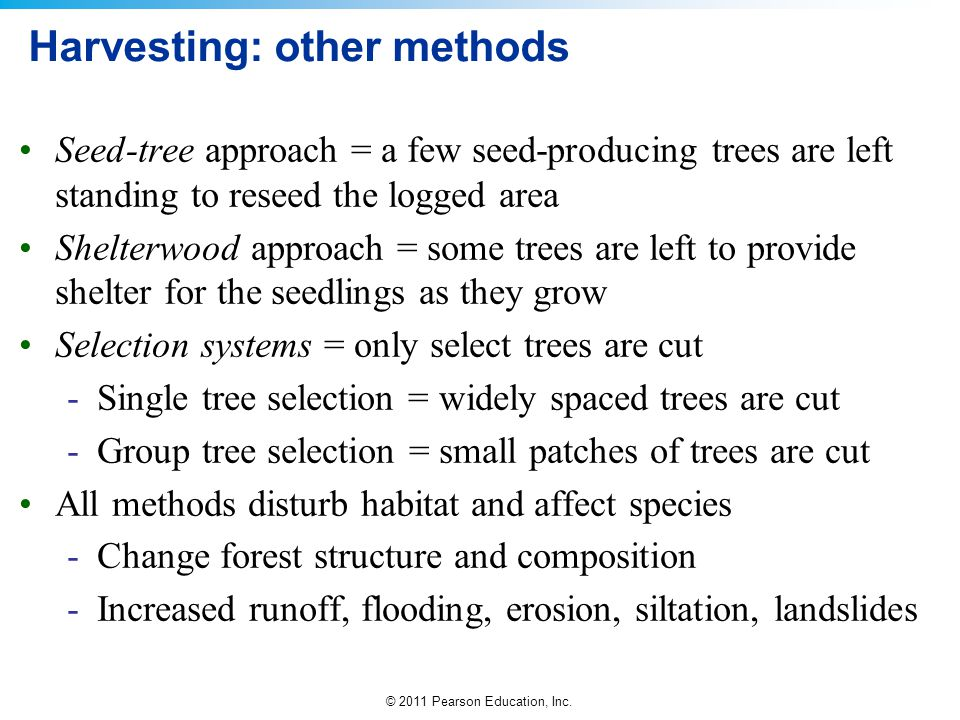 © 2011 Pearson Education, Inc. Harvesting: other methods Seed-tree approach = a few seed-producing trees are left standing to reseed the logged area S