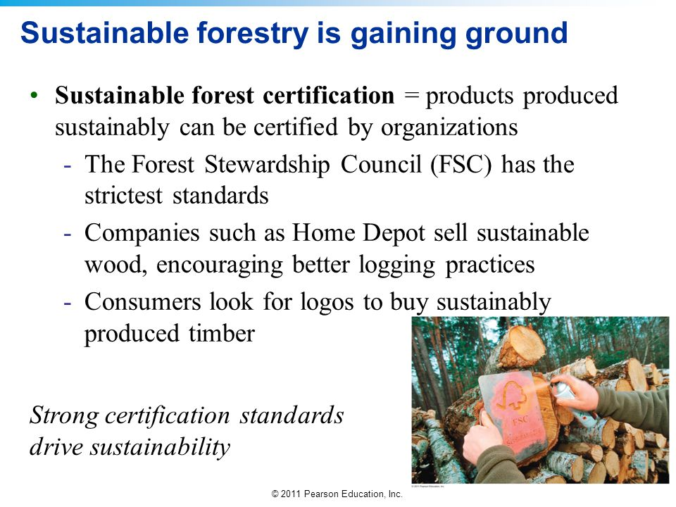© 2011 Pearson Education, Inc. Sustainable forestry is gaining ground Sustainable forest certification = products produced sustainably can be certifie