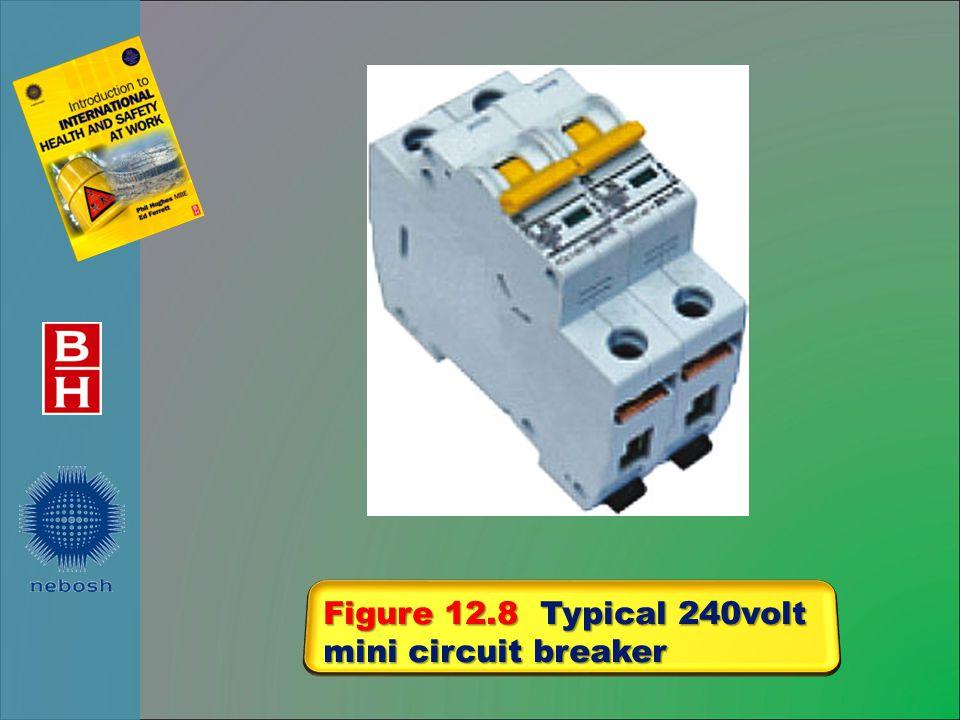 Figure 12.8 Typical 240volt mini circuit breaker