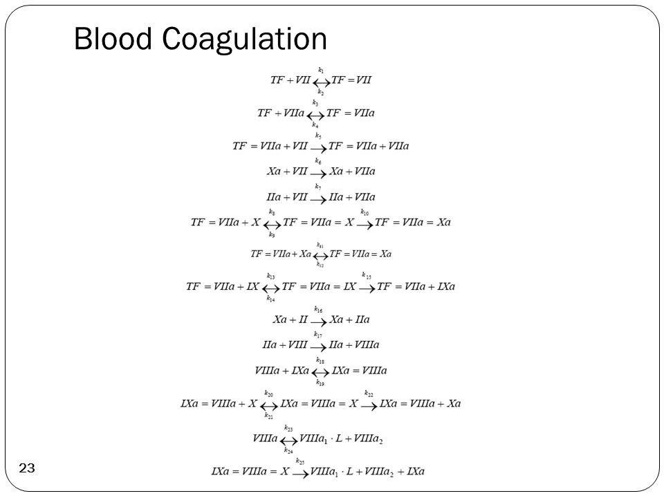 Blood Coagulation 23