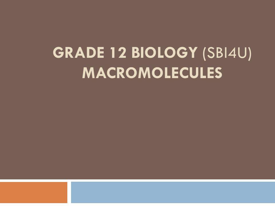 GRADE 12 BIOLOGY (SBI4U) MACROMOLECULES