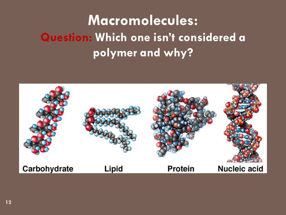 12 Macromolecules: Question: Which one isn't considered a polymer and why