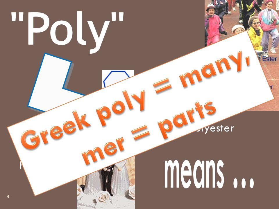 Polyester Polygamy Polygons 4