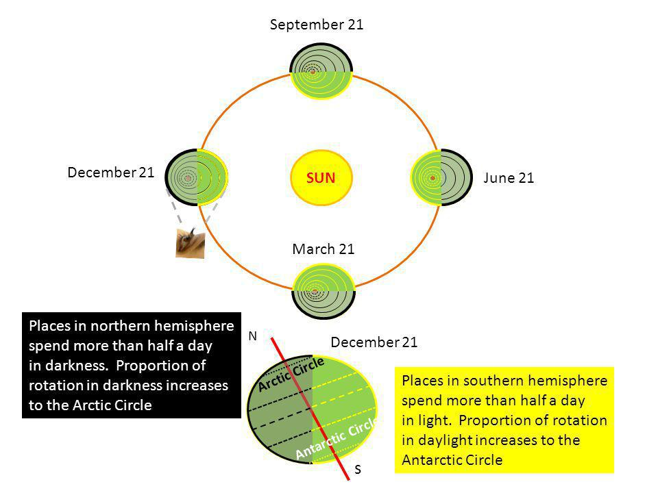 SUN March 21 December 21 N s June 21 September 21 Places in northern hemisphere spend more than half a day in darkness. Proportion of rotation in dark
