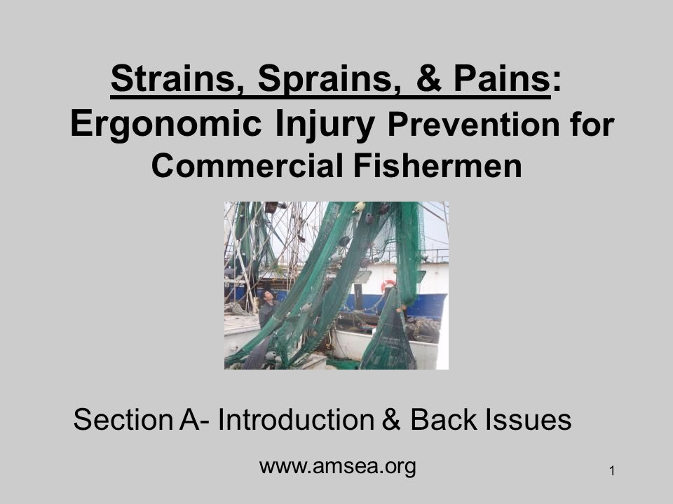1 Strains, Sprains, & Pains: Ergonomic Injury Prevention for Commercial Fishermen www.amsea.org Section A- Introduction & Back Issues