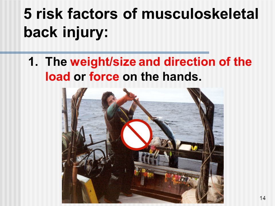 5 risk factors of musculoskeletal back injury: 14 1.The weight/size and direction of the load or force on the hands.