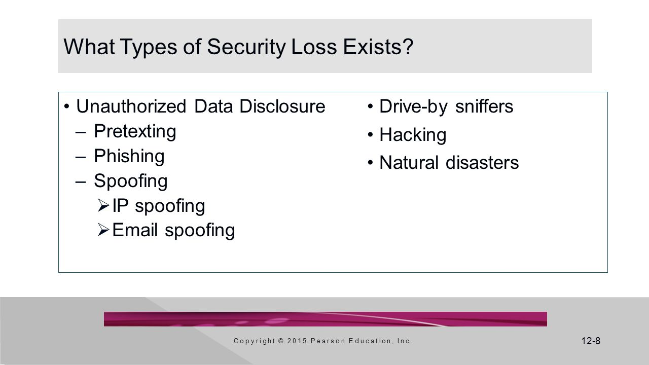 12-8 What Types of Security Loss Exists.