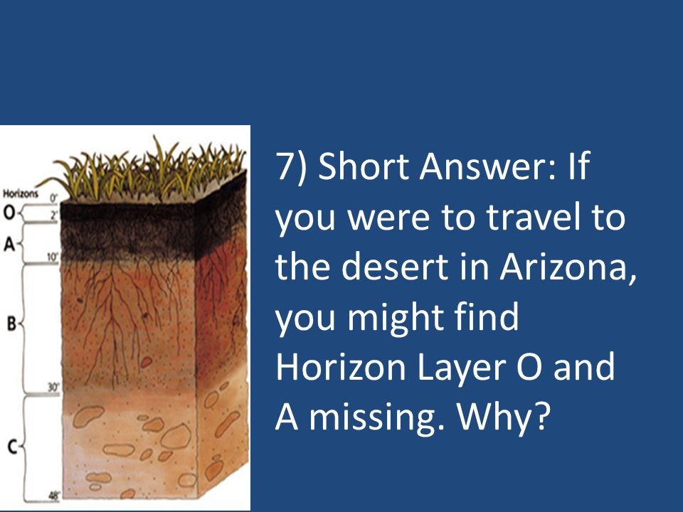 8) Short Answer: What determines how quickly Horizon O and A form?