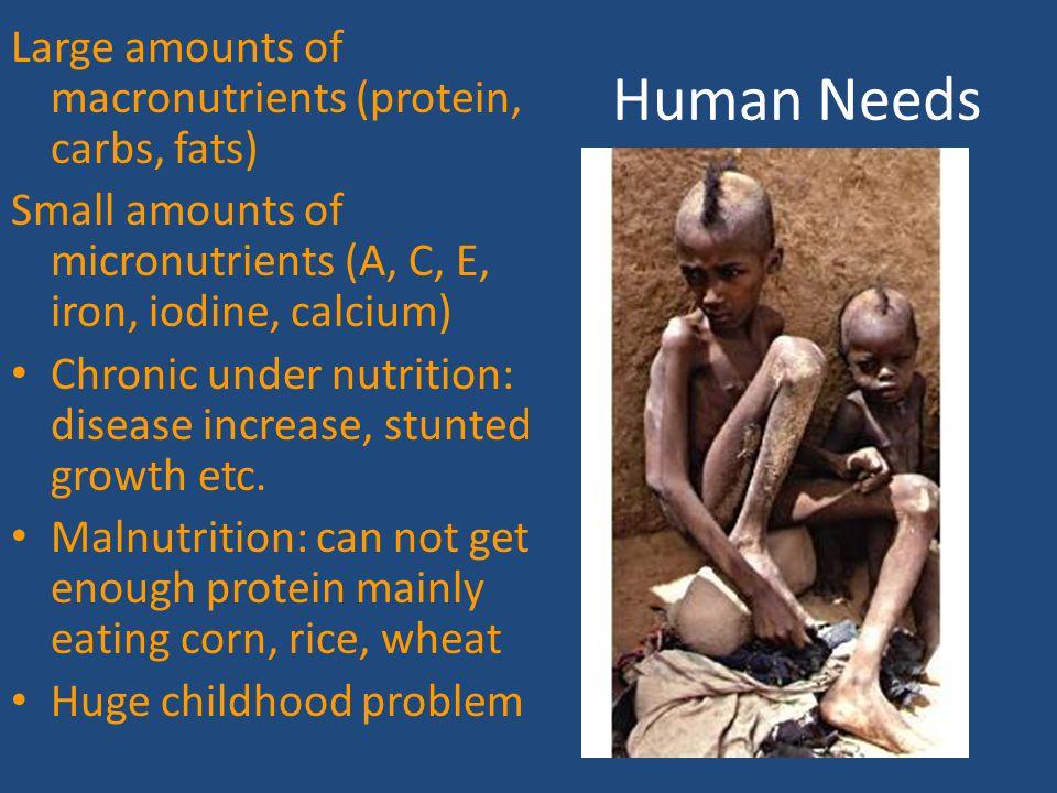 Malnutrition UN Estimates: 5.5 million each year die prematurely due to effects of under nutrition.