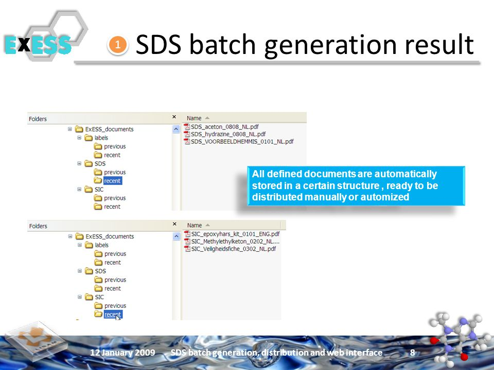 12 January 2009SDS batch generation, distribution and web interface 8 SDS batch generation result All defined documents are automatically stored in a certain structure, ready to be distributed manually or automized 1 1