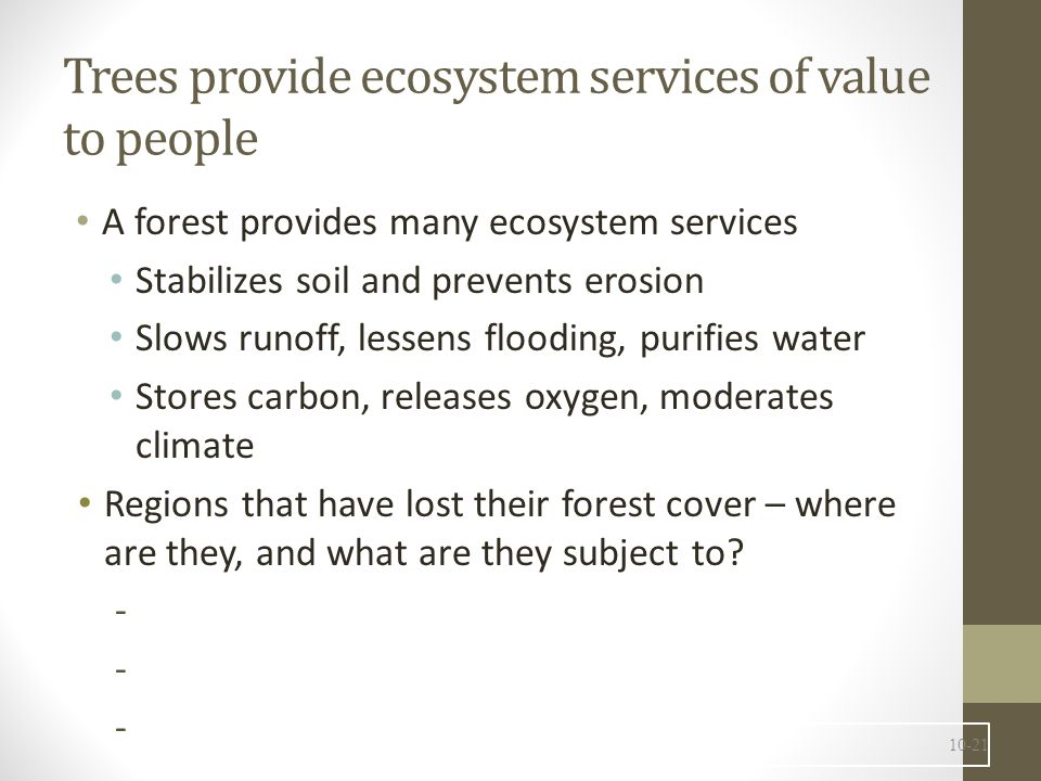 Harvesting Forest Products 10-22