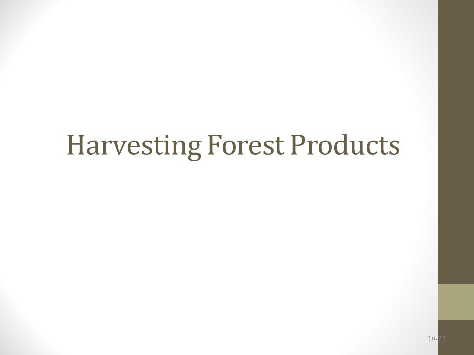 Forest products are economically valued Benefits: fuel, shelter, transportation (ships), paper Helped society achieve a high standard of living Softwood = timber harvested from coniferous trees Hardwood = timber harvested from deciduous trees NTFPs = non-timber forest products such as medicinal, herbal, decorative and edible products (e.g.