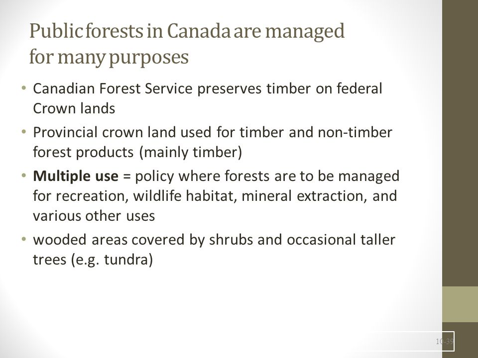 Public forests in Canada are managed for many purposes (cont'd) National Forest Strategy for 2003-2008 (couldn't find a reference to since 2005; may have been decentralized to provinces) Ecosystem-based management Better environmental, social, and economic sustainability of forest communities through legislation and policies Recognizing rights of Aboriginal peoples Diversification of markets for forest products Better skills and knowledge of forest practitioners Engaging Canadians in sustainability through urban forests Support private woodlots for forest sustainability National forest reporting system 10-40