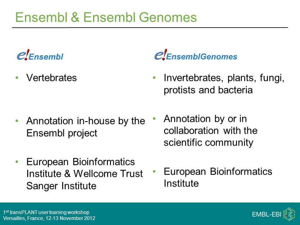1 st transPLANT user training workshop Versailles, France, 12-13 November 2012 Ensembl & Ensembl Genomes Vertebrates Annotation in-house by the Ensembl project European Bioinformatics Institute & Wellcome Trust Sanger Institute Invertebrates, plants, fungi, protists and bacteria Annotation by or in collaboration with the scientific community European Bioinformatics Institute