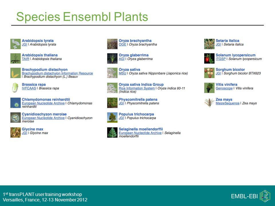 1 st transPLANT user training workshop Versailles, France, 12-13 November 2012 Species Ensembl Plants