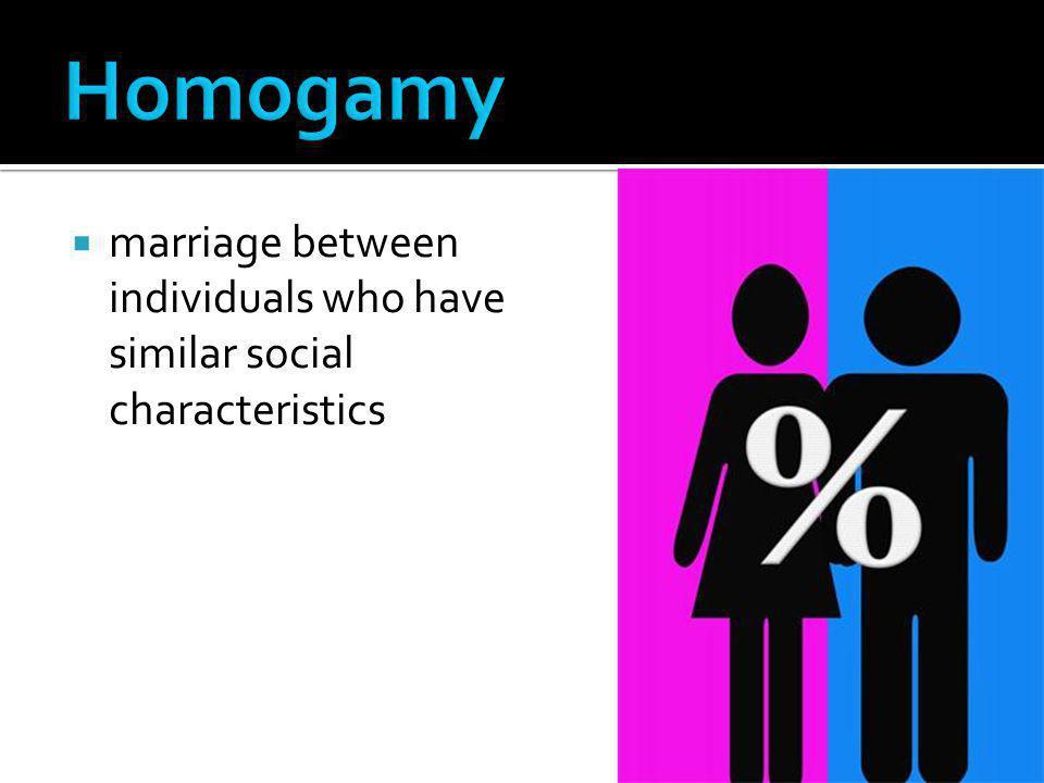  marriage between individuals who have similar social characteristics