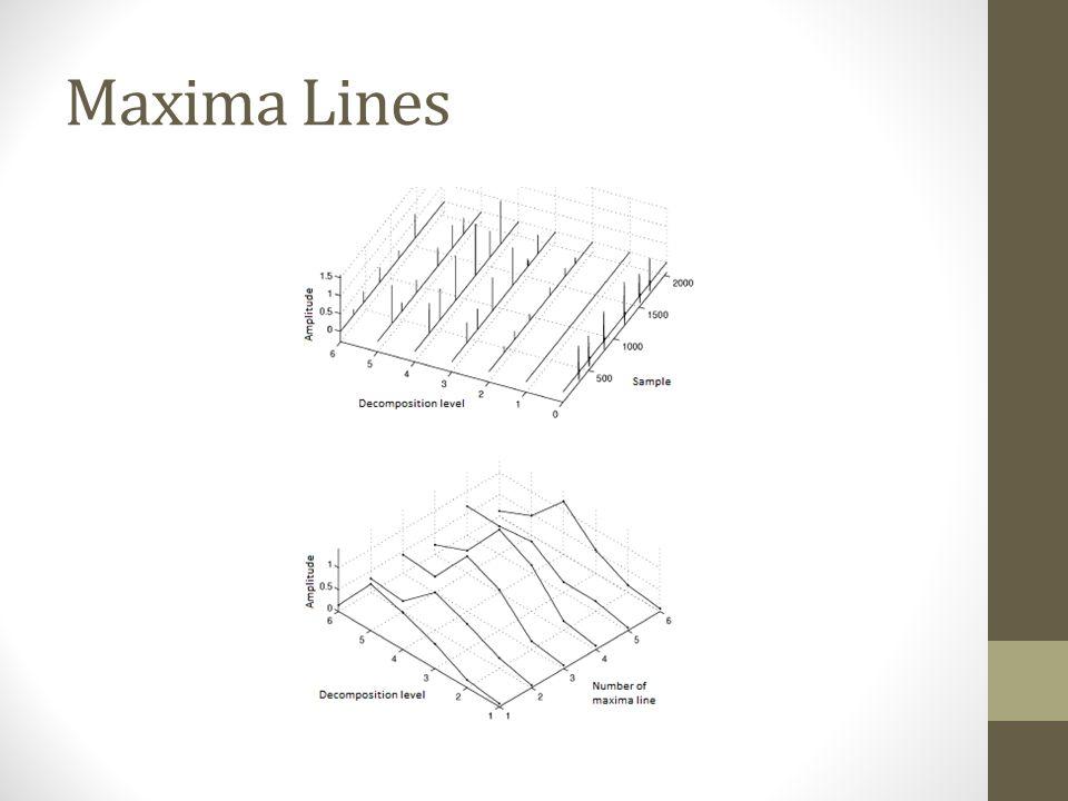 Maxima Lines