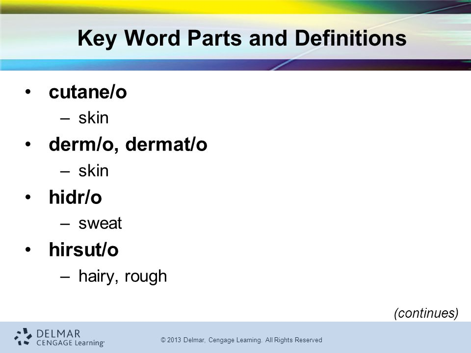 © 2013 Delmar, Cengage Learning. All Rights Reserved Key Word Parts and Definitions cutane/o –skin derm/o, dermat/o –skin hidr/o –sweat hirsut/o –hair