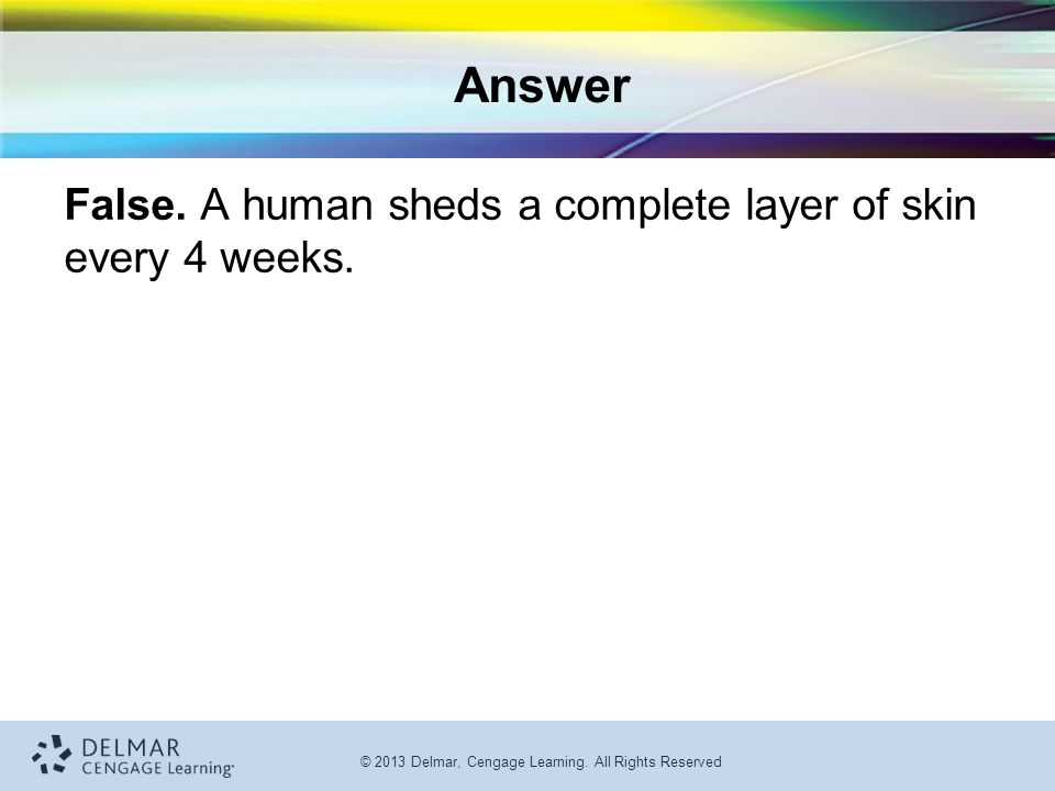 © 2013 Delmar, Cengage Learning. All Rights Reserved Answer False. A human sheds a complete layer of skin every 4 weeks.