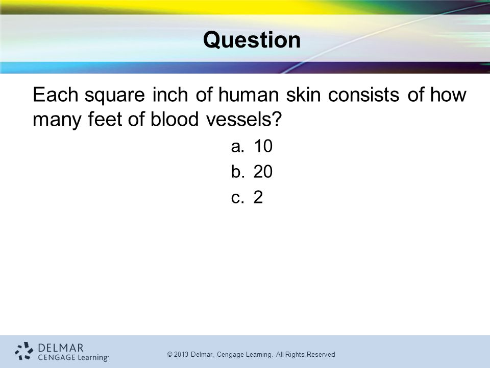 © 2013 Delmar, Cengage Learning. All Rights Reserved Question Each square inch of human skin consists of how many feet of blood vessels? a.10 b.20 c.2