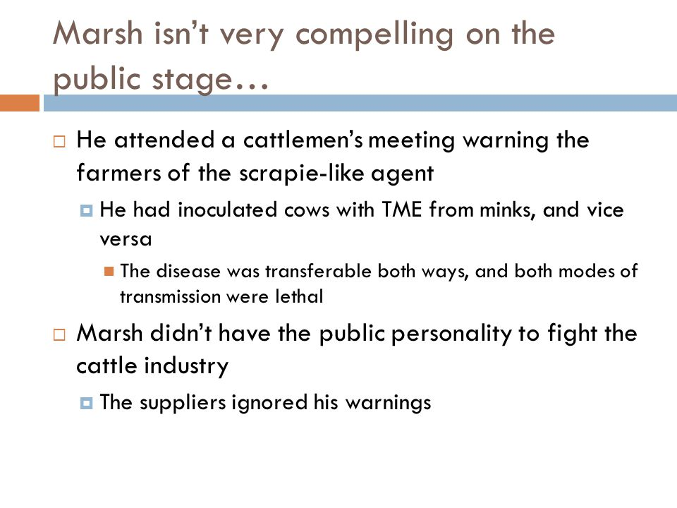 Marsh isn't very compelling on the public stage…  He attended a cattlemen's meeting warning the farmers of the scrapie-like agent  He had inoculated cows with TME from minks, and vice versa The disease was transferable both ways, and both modes of transmission were lethal  Marsh didn't have the public personality to fight the cattle industry  The suppliers ignored his warnings