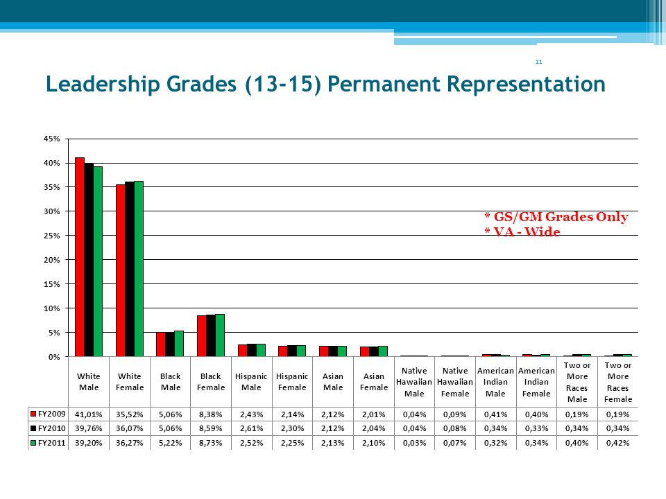 Leadership Grades (13-15) Permanent Representation 11 * GS/GM Grades Only * VA - Wide
