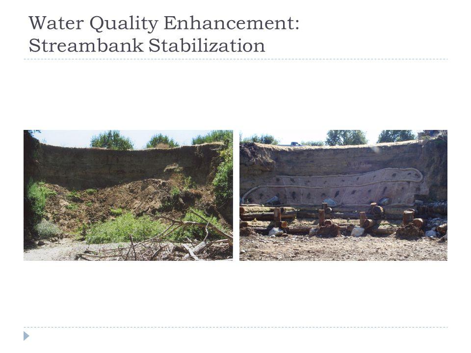 Water Quality Enhancement: Streambank Stabilization