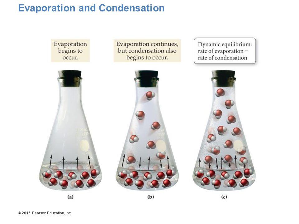 © 2015 Pearson Education, Inc. Evaporation and Condensation