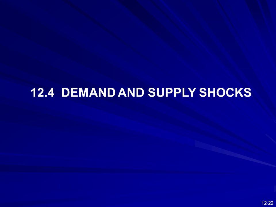 12-22 12.4 DEMAND AND SUPPLY SHOCKS
