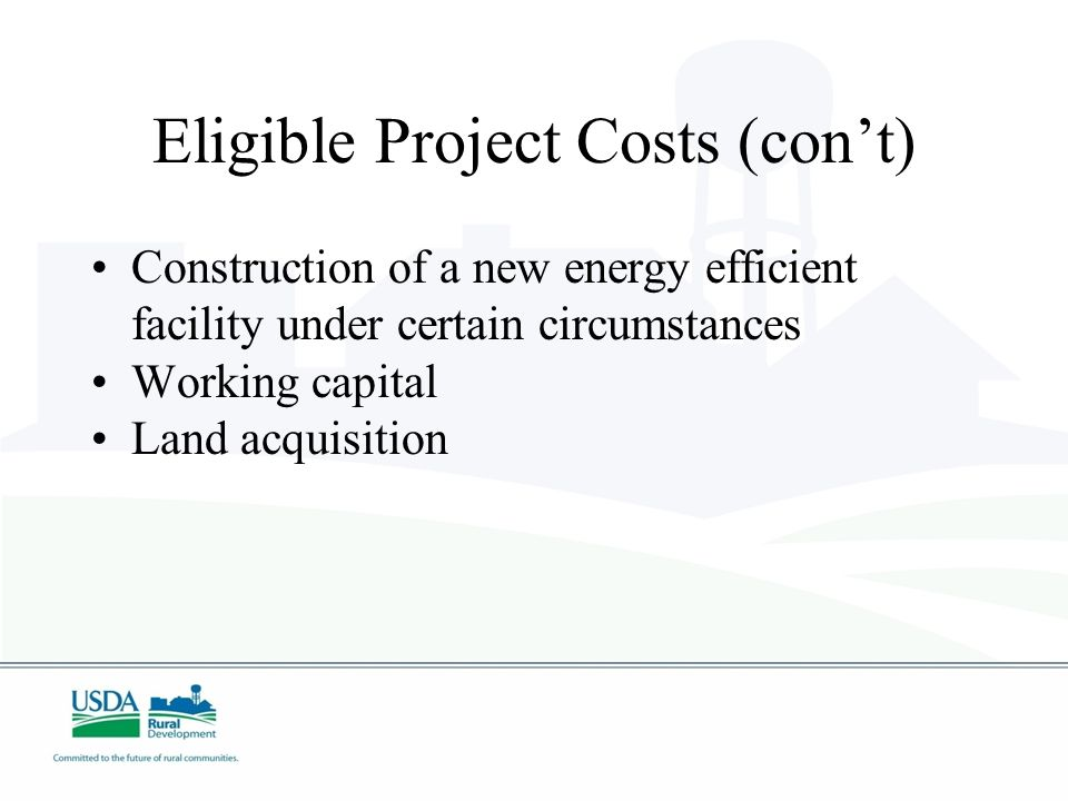 Eligible Project Costs (con't) Permit and license fees Professional service fees, except for application preparation Feasibility studies and Technical Reports Business Plans and Retrofitting