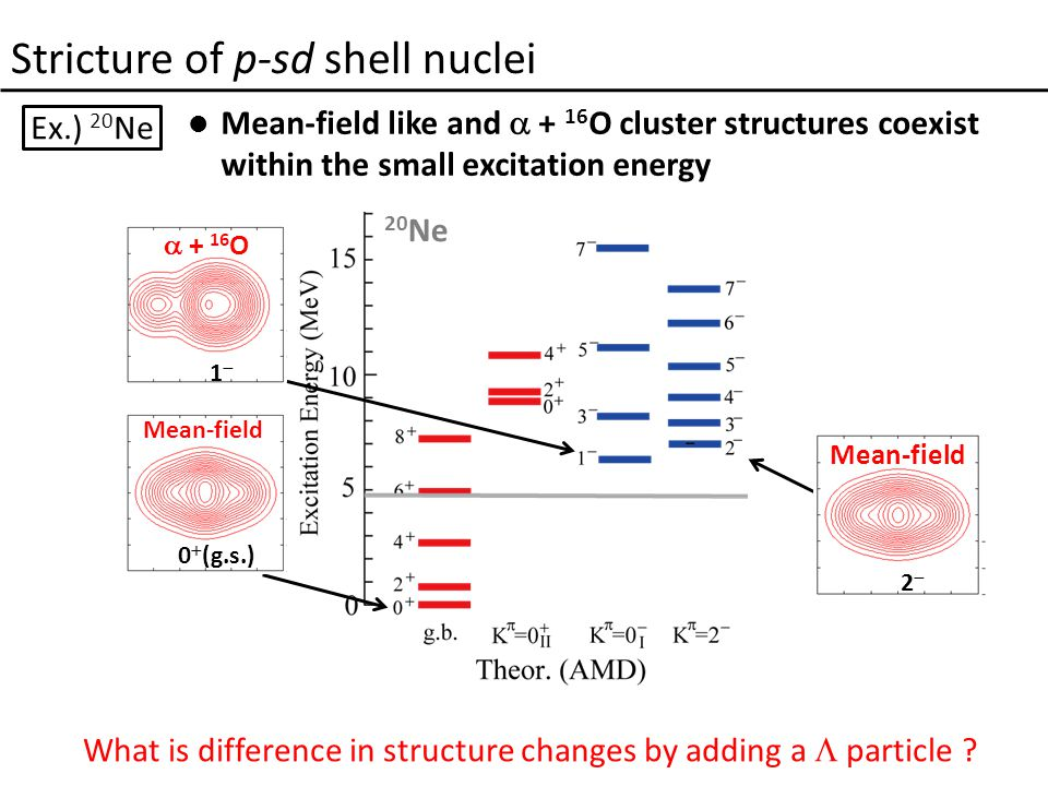 Stricture of p-sd shell nuclei Ex.) 20 Ne Mean-field like and  + 16 O cluster structures coexist within the small excitation energy 0  (g.s.) 11 22 20 Ne  + 16 O Mean-field What is difference in structure changes by adding a  particle