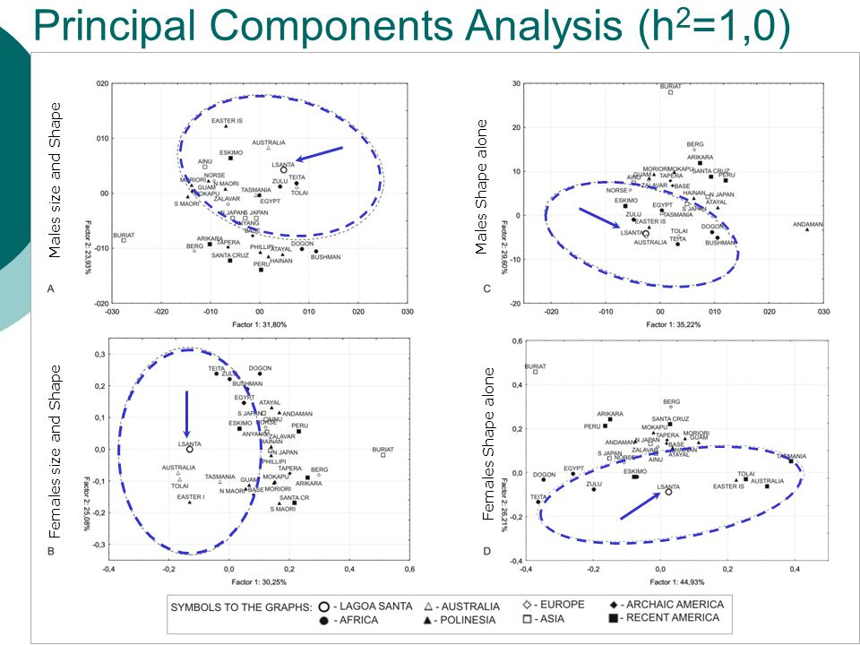 Principal Components Analysis (h 2 =1,0) Males size and Shape Females Shape alone Females size and Shape Males Shape alone