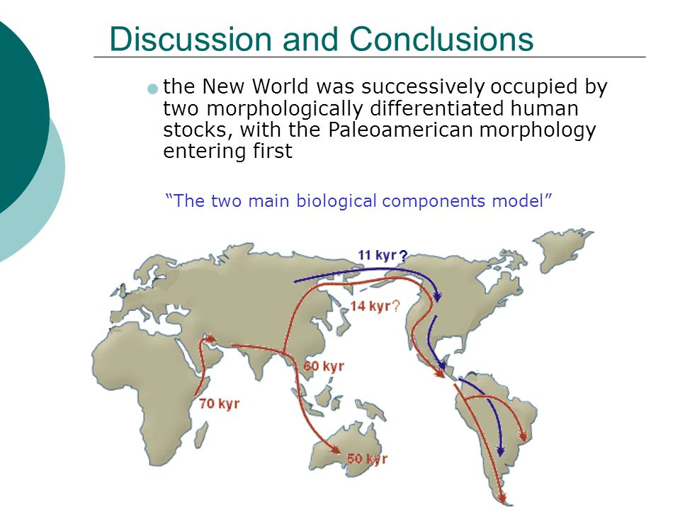 Discussion and Conclusions the New World was successively occupied by two morphologically differentiated human stocks, with the Paleoamerican morphology entering first The two main biological components model