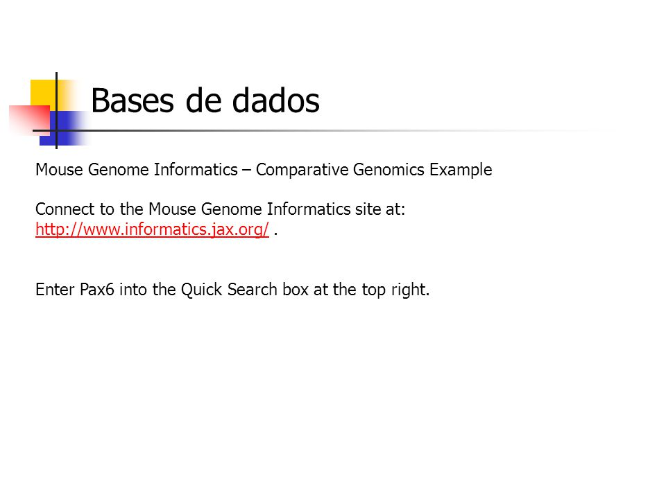 Bases de dados Mouse Genome Informatics – Comparative Genomics Example Connect to the Mouse Genome Informatics site at: http://www.informatics.jax.org/.