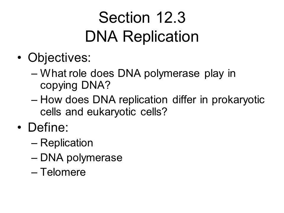 Section 12.3 DNA Replication Objectives: –What role does DNA polymerase play in copying DNA? –How does DNA replication differ in prokaryotic cells and