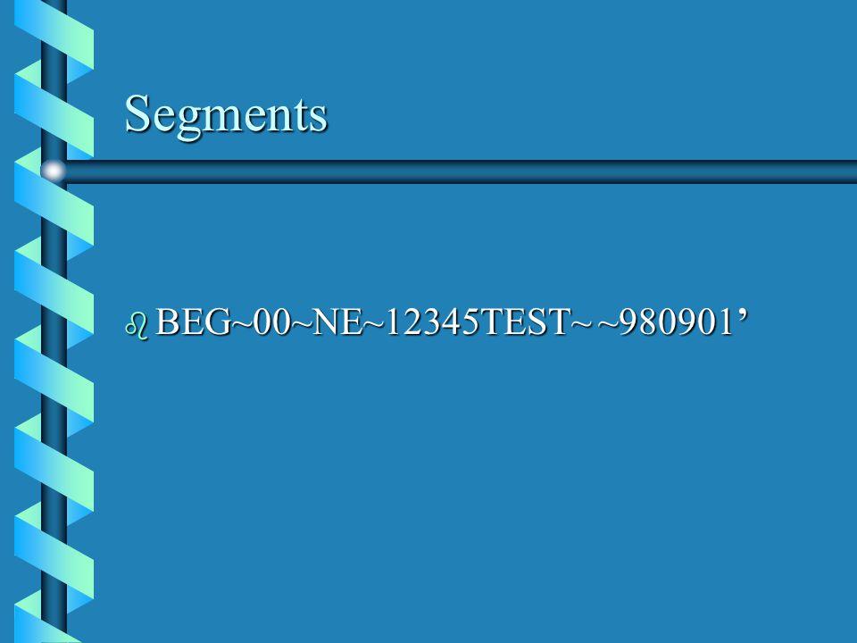 Segments b BEG~00~NE~12345TEST~ ~980901'