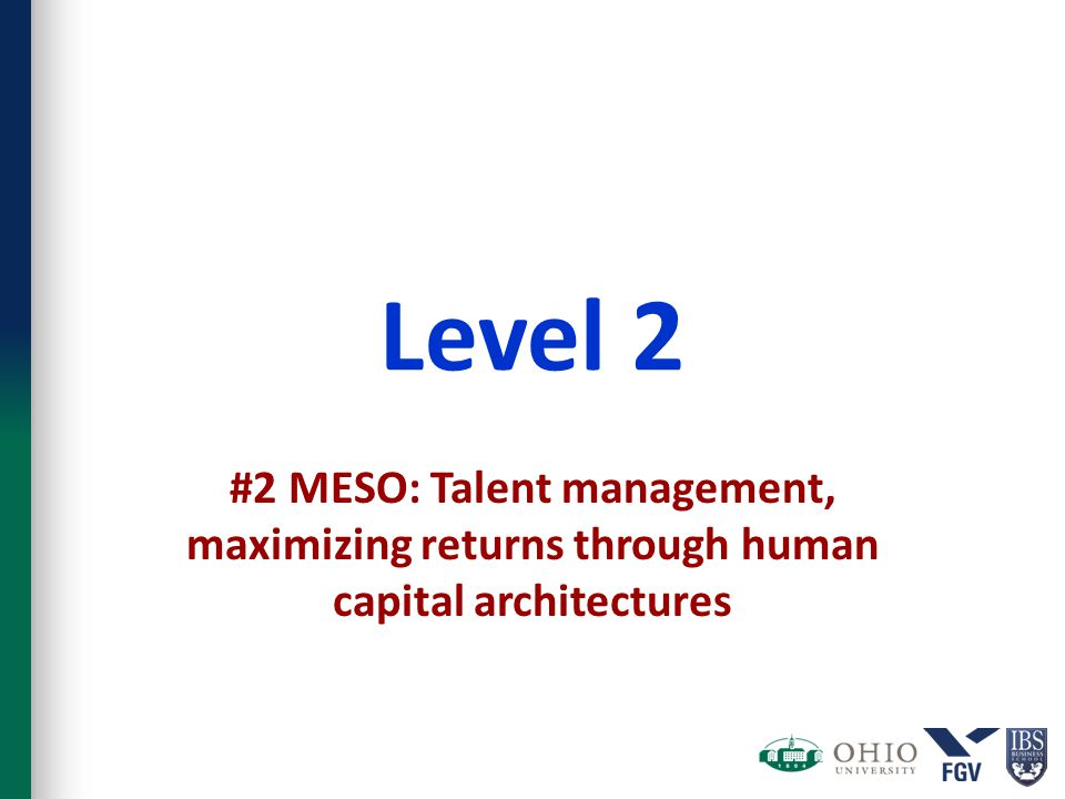 Level 2 #2 MESO: Talent management, maximizing returns through human capital architectures
