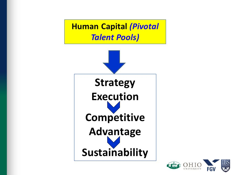 Human Capital (Pivotal Talent Pools) Strategy Execution Competitive Advantage Sustainability