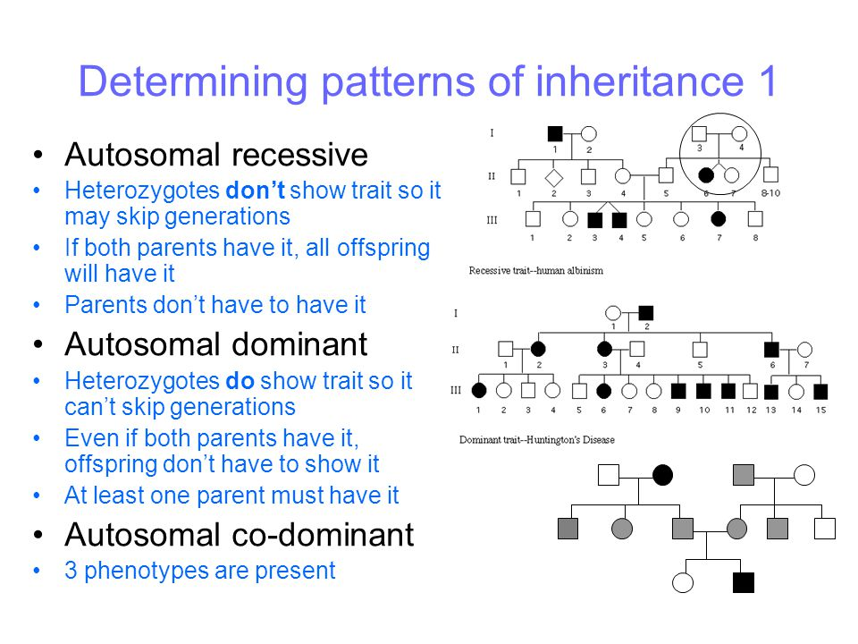 Determining patterns of inheritance 1 Autosomal recessive Heterozygotes don't show trait so it may skip generations If both parents have it, all offsp