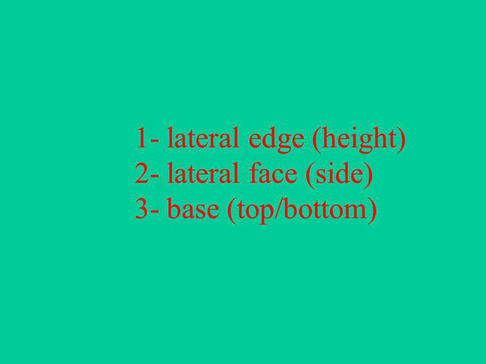 1- lateral edge (height) 2- lateral face (side) 3- base (top/bottom)