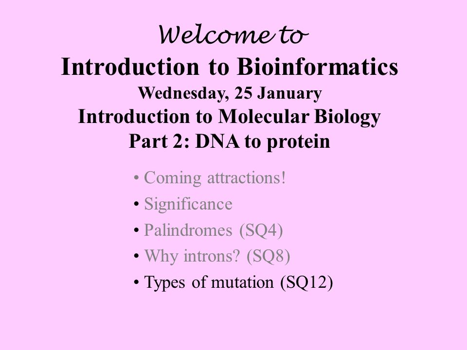 Welcome to Introduction to Bioinformatics Wednesday, 25 January Introduction to Molecular Biology Part 2: DNA to protein Coming attractions.