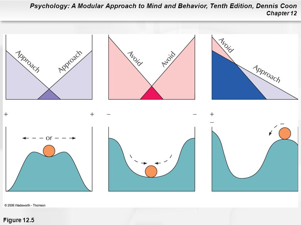 Psychology: A Modular Approach to Mind and Behavior, Tenth Edition, Dennis Coon Chapter 12 Figure 12.5
