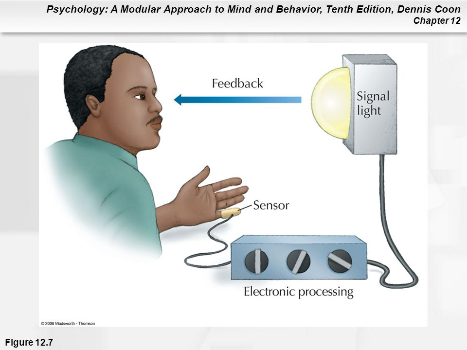 Psychology: A Modular Approach to Mind and Behavior, Tenth Edition, Dennis Coon Chapter 12 Figure 12.7