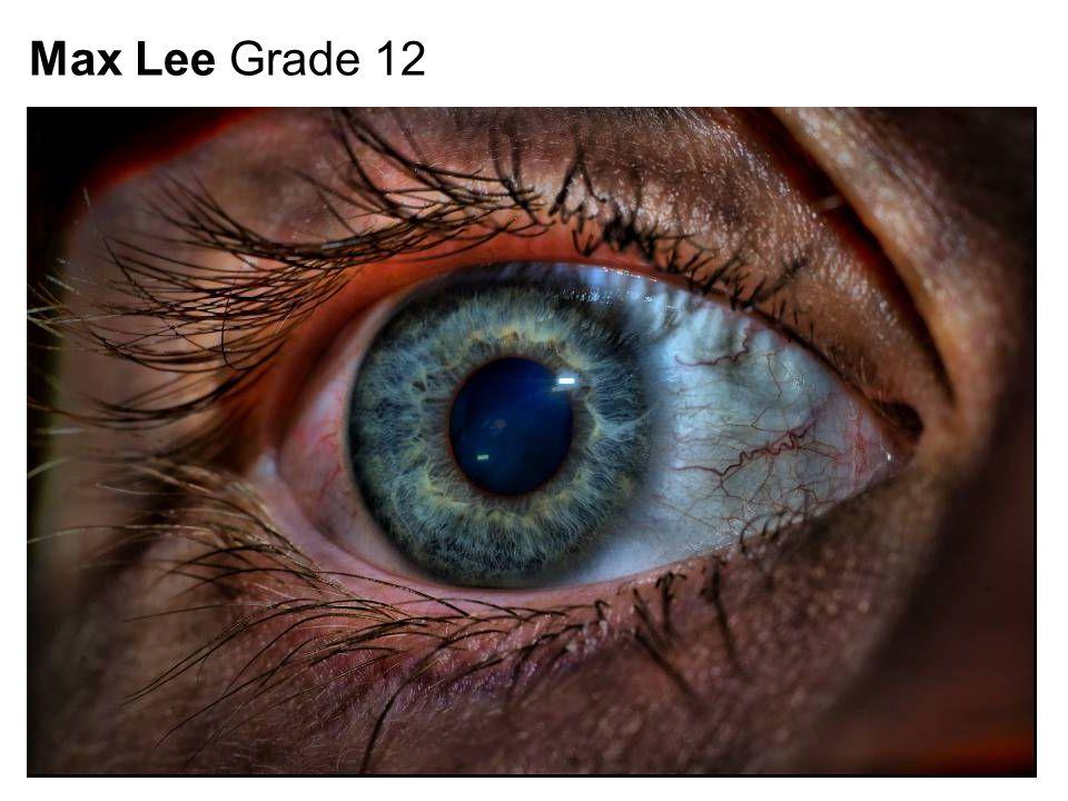 Max Lee Grade 12