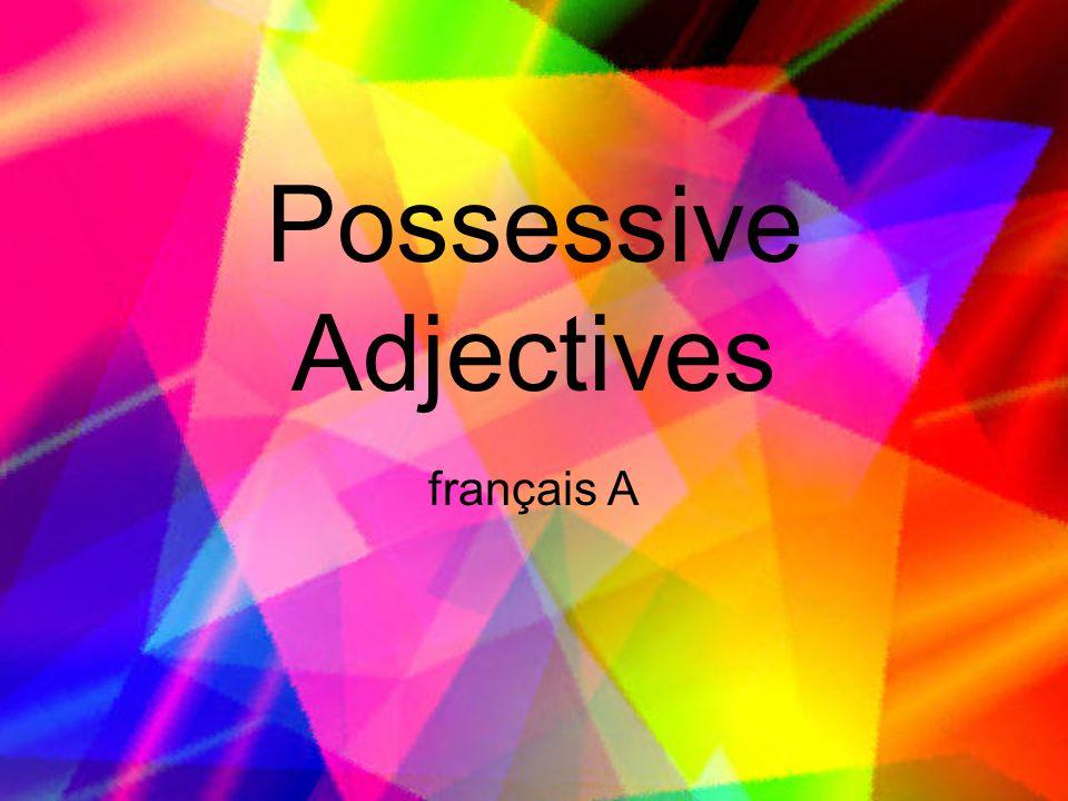 Possessive Adjectives français A