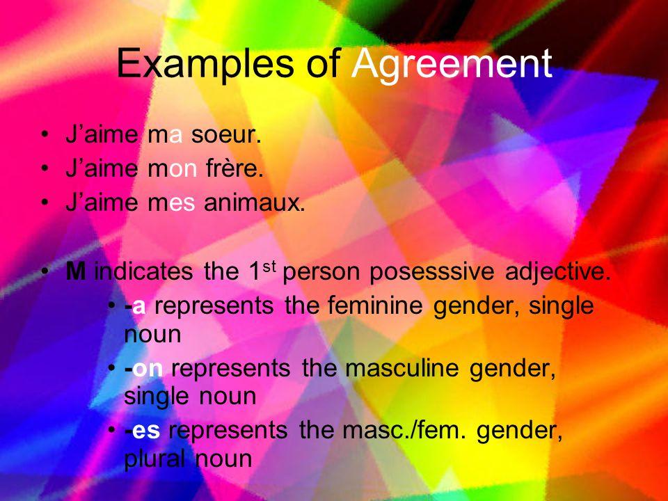 Examples of Agreement J'aime ma soeur.J'aime mon frère.